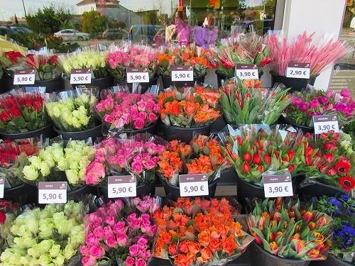 Franchise Carrement Fleurs : devenir franchisé en Fleurs